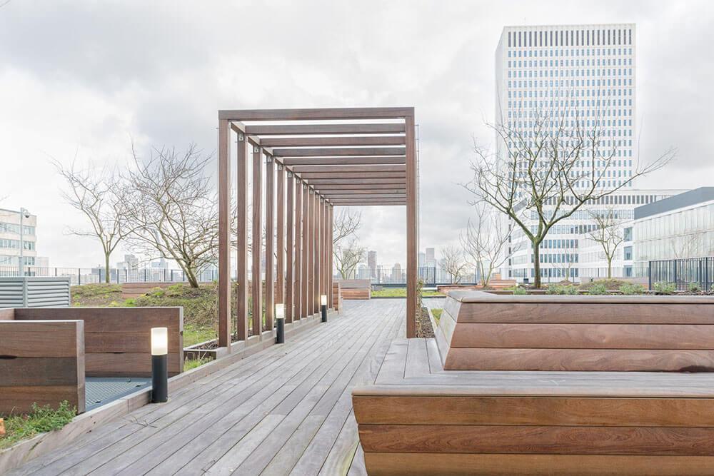 Cumaru als Duurzame Dakterras in Rotterdam
