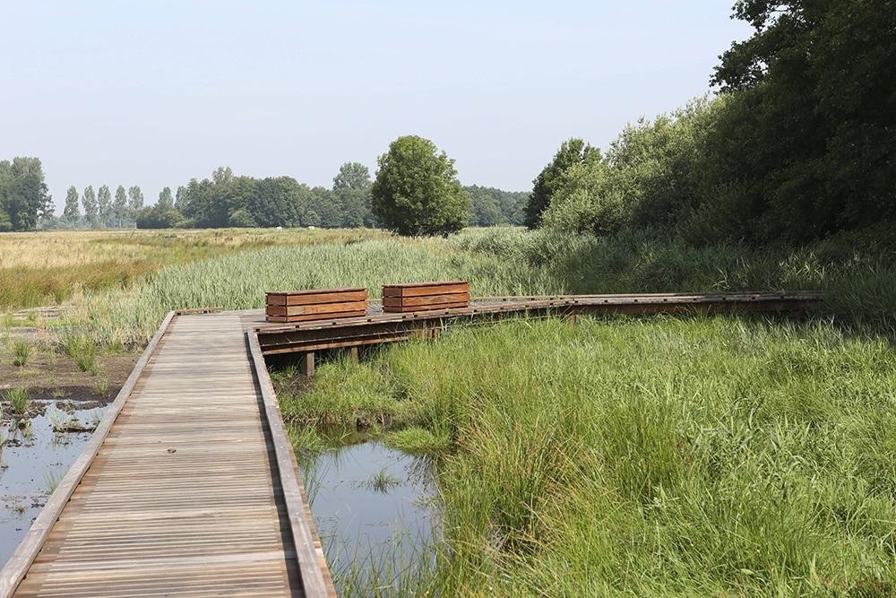 Loopbrug vlonders over water
