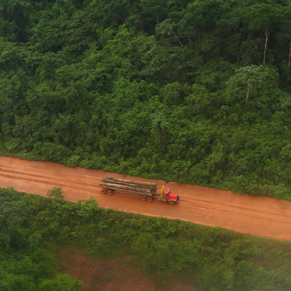 Vervoeren van tropisch hardhout